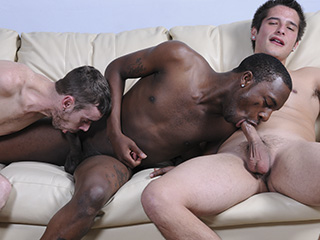 Interracial Pickups Dani Decor